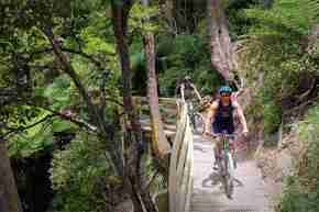 Te Whiti Riser two people cycling down track on Green Jersey Explorer Tour