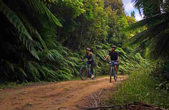 Waiu Park two mountain bikers between te whiti riser and waiu park ecnz plyon road