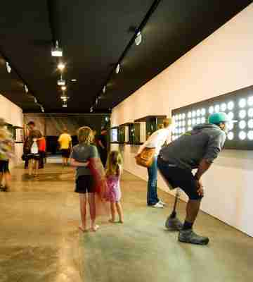 dowse art museum gallery visitors looking art artworks