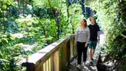 Percy Scenic Reserve Lizzie and Ryan walking