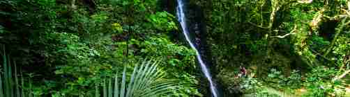 Percy Scenic Reserve waterfall