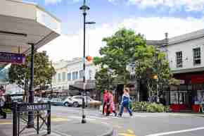jackson street petone shoppers crossing road in front of historic buildings