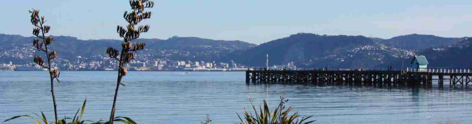 petone beach view of wharf with wellington city in background